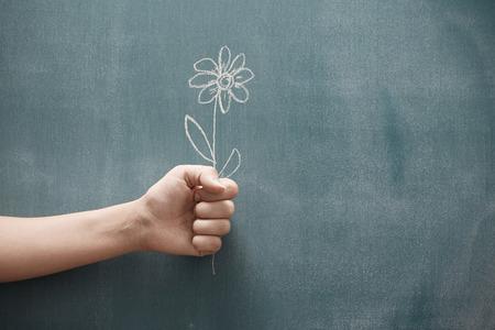 Human hand holding single flower drawn on a blackboard Standard-Bild