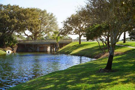 Natural parkland with lake. Standard-Bild