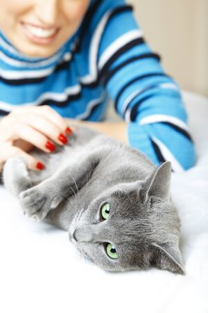 Cat pampering indoors and smiling woman. Shallow depth of field