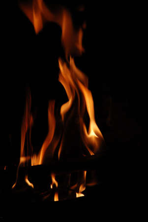 Photography of the bright fire dark in the night Stock Photo