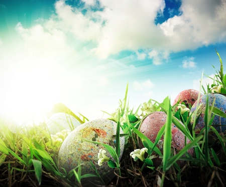 Colorful Easter eggs decorated with flowers in the grass on blue sky background in water reflection photo