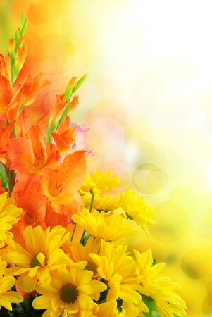 beautiful flower design. With copy space Stock Photo - 13269164