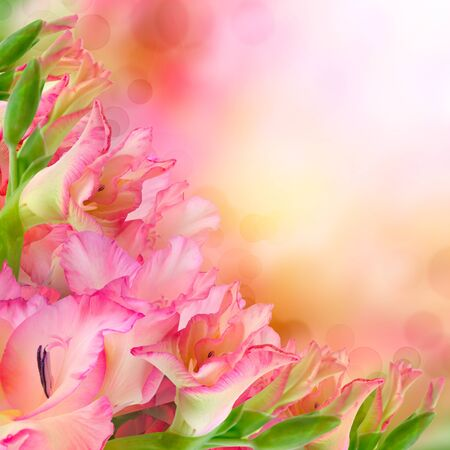 pink flower design. With copy space