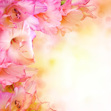 pink flower design. With copy space photo
