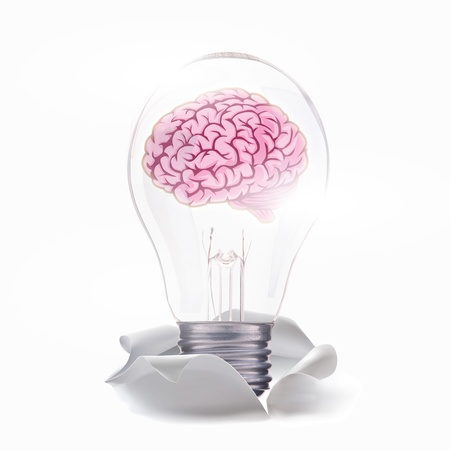 brain of idea   photo