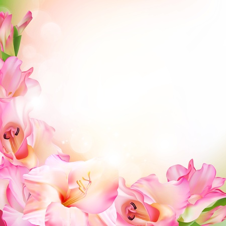 cadre noir et blanc: Belle fleur rose Illustration