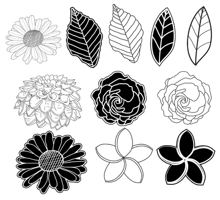 Floral  design  With leaf and flower in black and white
