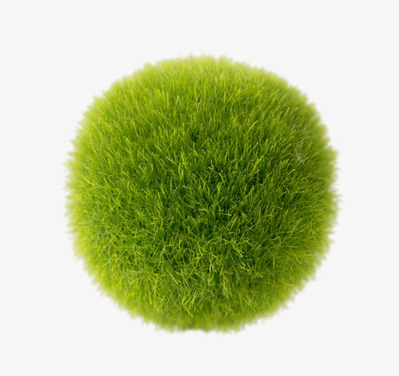 green grass ball photo