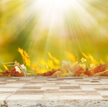hojas secas: otoño de antecedentes