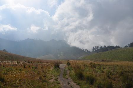savanna: savanna with cloudy