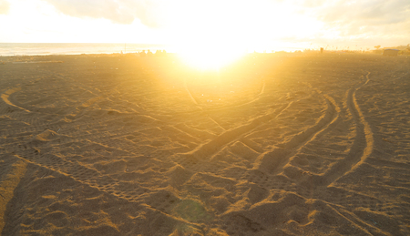 sunset at beach with gold sand