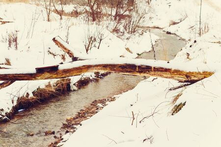 The stream flows through the winter woods. Through it spanned by a tree-like bridge. Everywhere is a lot of white snow. Banque d'images