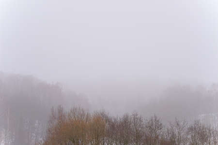 Winter foggy landscape. Winter mist covers the tree tops.