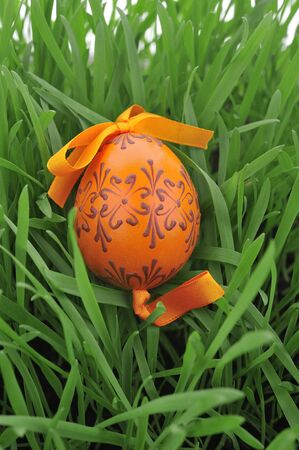 biologic: Colorful painted easter egg in the grass