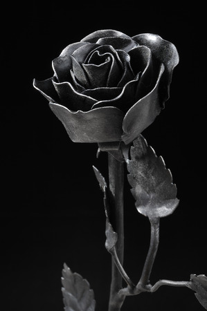 Unique black wrought iron roses Standard-Bild