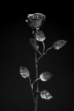 wrought: Unique black wrought iron roses Stock Photo
