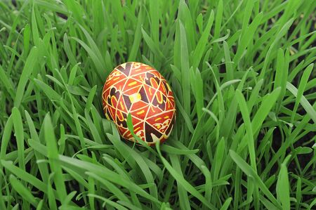 eastertime: Colorful painted easter egg in the grass