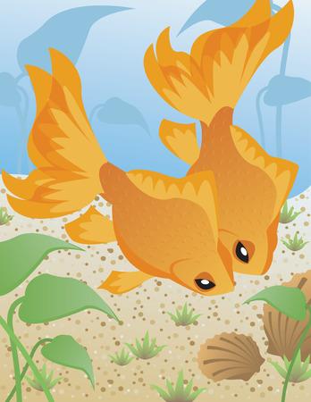 고요한 장면: Tranquil Scene of Two Goldfish 일러스트