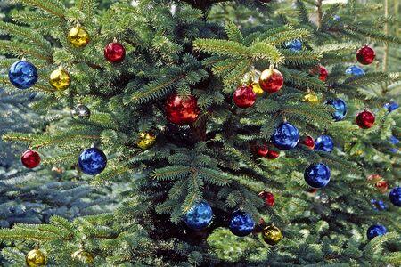Christmas tree with glitterballs