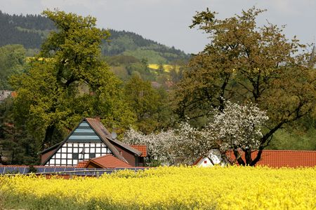 Timbered house with rape field in spring, Lower Saxony, Germany, Europe photo