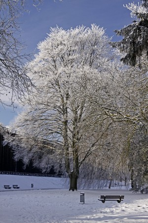 Spa park in winter - Bad Rothenfelde, Osnabruecker Land, Lower Saxony (in the background the salt-works), Germany, germanEurope Stock Photo - 7822564