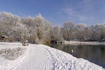 Trees with pond landscape in winter, Bad Laer, spa park, Osnabruecker Land, Lower Saxony, Germany, Europe Stock Photo - 9443455