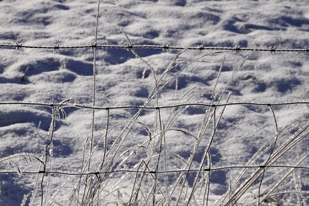 Fence wires in winter with ice crystals in Germany Stock Photo - 9667971
