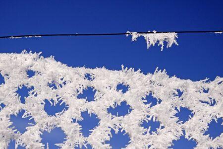hoarfrost: Wire-netting fence with hoarfrost in winter, Germany