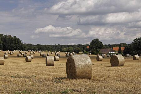 baler: Ostercappeln, round baler, straw bale in Lower Saxony, Germany, Europe Stock Photo