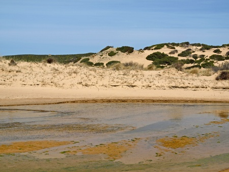 Piscinas, dune landscape at the Costa Verde, Southwest Sardinia, Italy, Europe Stock Photo - 12970747
