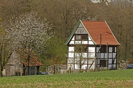 Half-timbered house with cherry blossom in April in Holperdorp, North Rhine-Westphalia, Germany