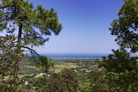 View from Ramatuelle at the landscape near Saint-Tropez, French Riviera, Provence, Southern France, Europe photo