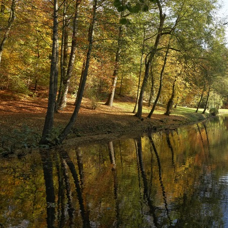 Farbe: Pond landscape in autumn, Bad Iburg, Osnabrueck country, Lower Saxony, Germany, Europe Stock Photo
