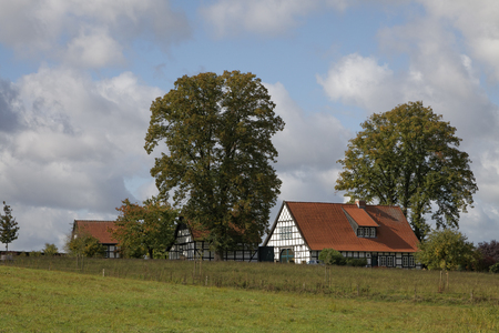 broad leaved tree: Half-timbered house in autumn, Georgsmarienhuette, Osnabrueck country, Lower Saxony, Germany, Europe Stock Photo