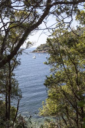 elba: Mediterranean coast near Bagnaia, Elba Iceland, Elba, Iceland, Tuscany, Italy, Europe