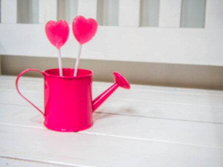 candy  heart pink in small pink watering can on a wooden white chair background Stock Photo