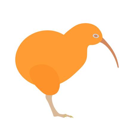 cartooning: Kiwi bird illustration. Kiwi bird on white background. Kiwi bird. Kiwi bird illustration. Kiwi bird isolated .