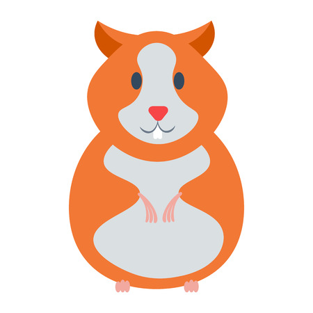 cute hamster: Hamster vector illustration. Hamster cartoon domestic animal isolated on white background. Hamster cartoon vector icon illustration. Hamster isolated.