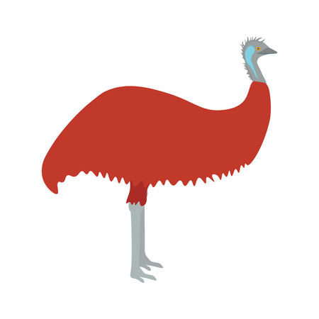 nomadic: Emu vector illustration. Emu bird on white background. Emu vector. Emu illustration. Emu isolated vector