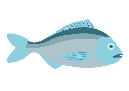 dorado: Dorado fish vector illustration. Dorado fish on white background. Dorado fish vector. Dorado fish illustration. Dorado fish isolated vector.