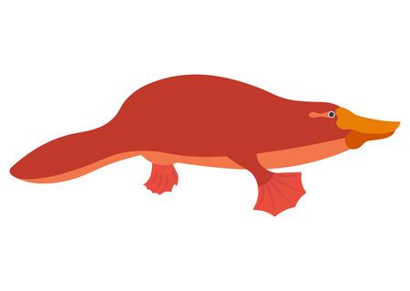 platypus: Platypus flat illustration duckbill character cartoon platypus vector. Platypus isolated on white background. Platypus vector  illustration. Platypus isolated vector.