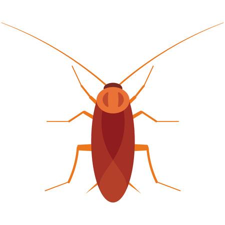 disgust: Cockroach vector illustration. Cockroach bug on white background. Cockroach vector. Cockroach illustration. Cockroach beetle isolated vector