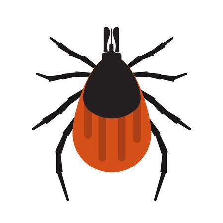 insetti Mite illustrazione vettoriale. Mite isolato su sfondo bianco. illustrazione vettoriale parassita. pelle Parasite vettore isolato.