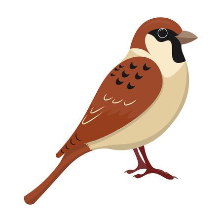 cut away: cute sparrow cartoon vector illustration. sparrow isolated vector Illustration