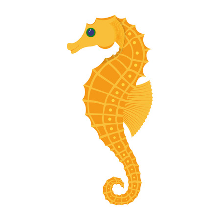 Seahorse vector illustration isolated on white background
