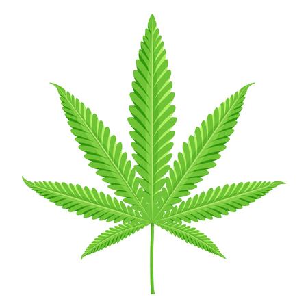 Cannabis illustration vectorielle. Marijuana isolé sur un fond blanc