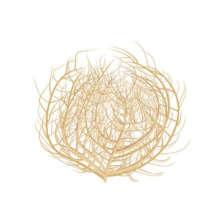 Tumbleweed vector illustration .Tumbleweed on white background. Tumbleweed  isolated vector