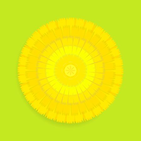 dandelion flower: Dandelion flower illustration isolated on a white background