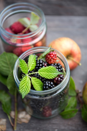 Delicious blackberries and blueberries in a glass photo