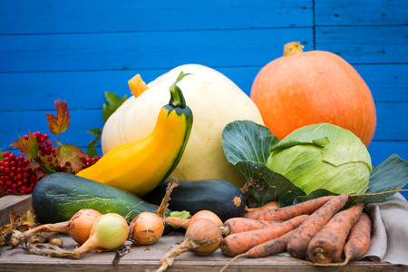 Fresh vegetables from the harvest photo